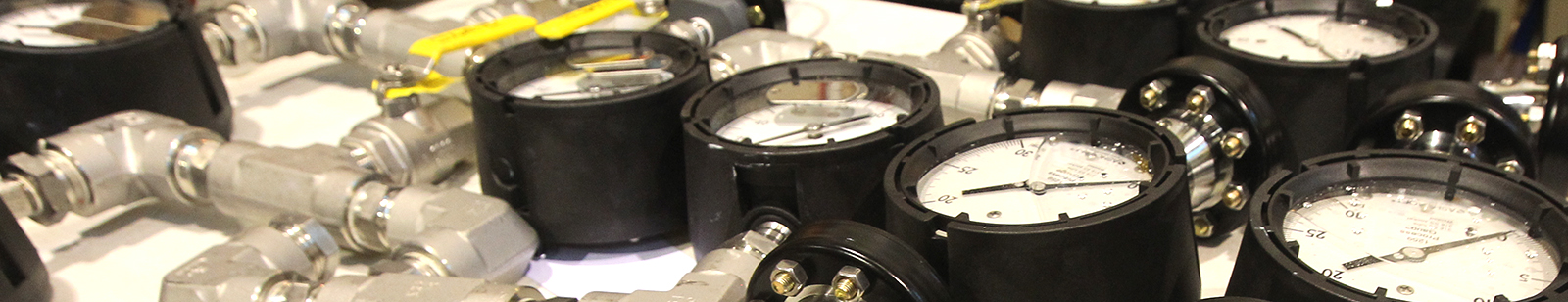 Diaphragm Seal Assembly